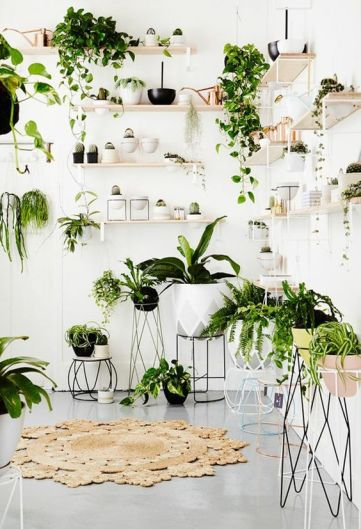 plantes-decorer-interieur-lili-in-wonderland-6