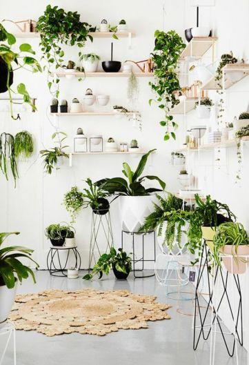 plantes-decorer-interieur-lili-in-wonderland-6